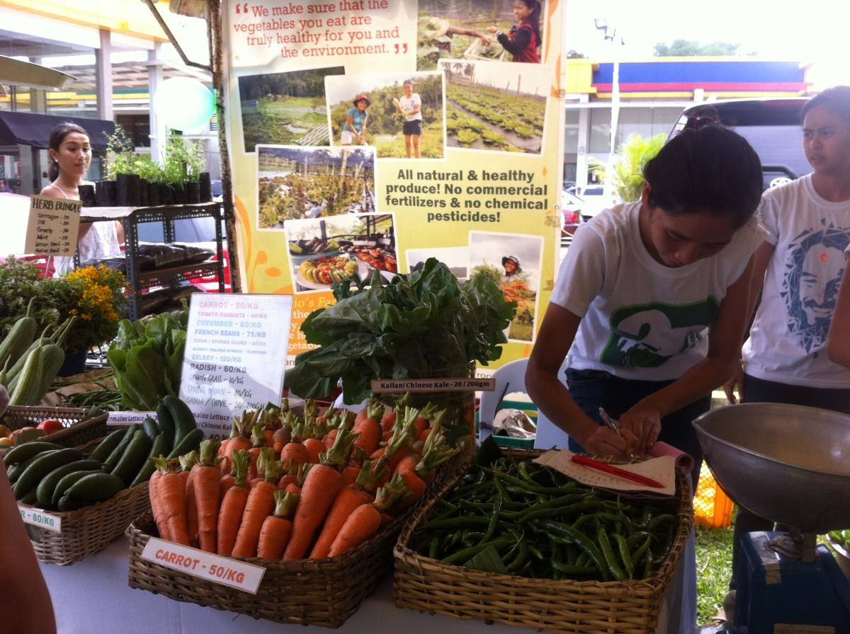 cebu organic veggies