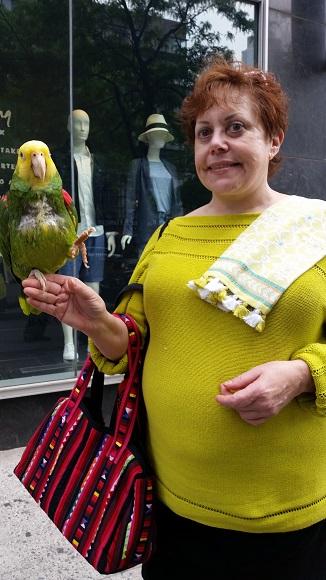 parrotstrolling